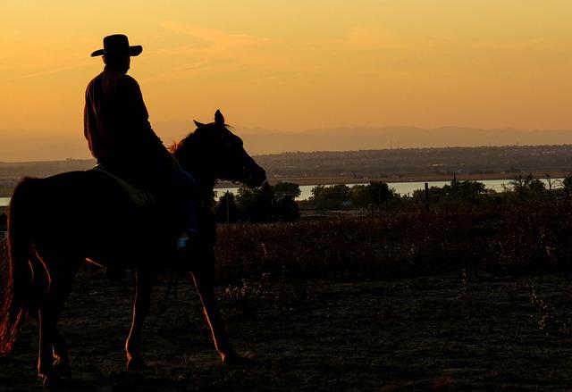 Investment Strategy: Cowboy Split