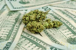 Economic benefits from marijuana sales