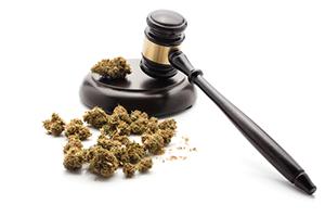 initiative for marijuana legalization in California