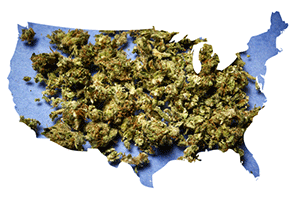 States legalizing marijuana in 2017
